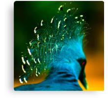 Victoria Crowned Pigeon Canvas Print