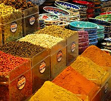 Colours of spice by su2anne