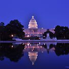 United States Capitol - Washington, DC by michael6076