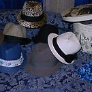 Fedora Addiction by TeAnne