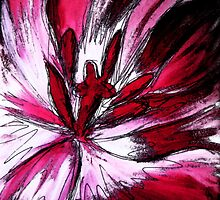 Pink Tulip study #6 by Amy Bettison