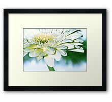 Fresh greens, butter and cream Framed Print