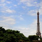 The Iron Lady - The Eiffel Tower, Paris by CalumCJL