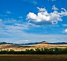The Big Sky in Deer Lodge County by Bryan D. Spellman