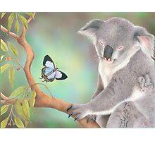 A Kiss for Koala Photographic Print