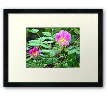 Forest Gems Framed Print