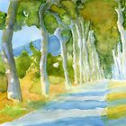 Avenue des Platanes, France by reddogcards