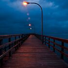 Blue Morning on the Dock by vicjauron