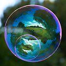 Twin Bubble Landscapes by Richard Heeks