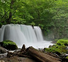 Silky Smooth - Oirase Waterfall in Aomori Japan by thammerlund