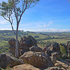 Picnic At Hanging Rock by TomRaven
