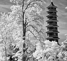 Kew Pagoda, Royal Botanic Gardens by Chris Tarling