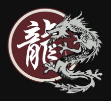 Year of The Dragon by ChineseZodiac