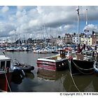 Harbour Arbroath by markw123