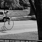 Pennyfarthing in Willow Park in the Summer by thebaum