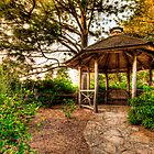 Rustic gazebo by (Tallow) Dave  Van de Laar