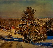 Rural Winter In Vermont by Deborah  Benoit