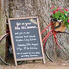 Kingston Lacy Bike ride by LorrieBee