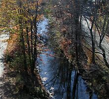 Blackstone Canal in Autumn by Barry Doherty