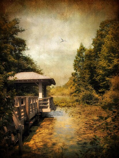 The Dock by Jessica Jenney