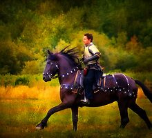 A Knight In Shining Armour by TeresaB