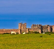 Bamburgh Castle Northumberland UK by James  Key