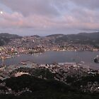 Night View over Nagasaki  by Sunny Shaffner
