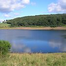 Wimbleball Lake, Somerset,Devon,UK pic 3 by janet davies