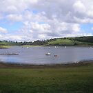 Wimbleball Lake, Somerset,Devon,UK picture 6 by janet davies