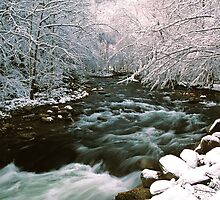 MIDDLE PRONG LITTLE RIVER,WINTER by Chuck Wickham