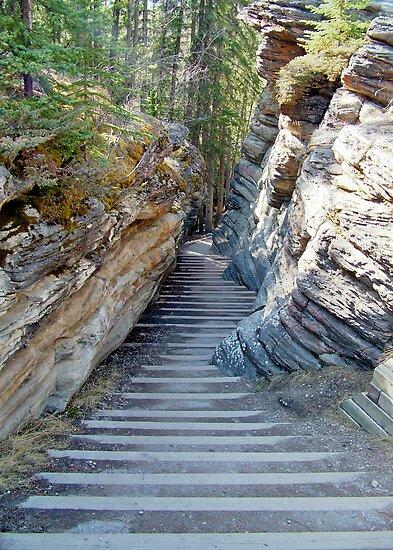 Athabasca Falls Steps by AnnDixon