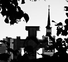 Vabadussammas, Tallinn by tutulele