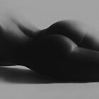 Curves by The Nude  Project