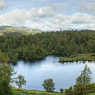 Tarn Hows In August.....(A Panorama) by VoluntaryRanger