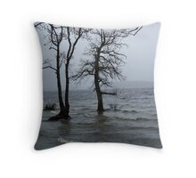 By the Waters Edge. Throw Pillow