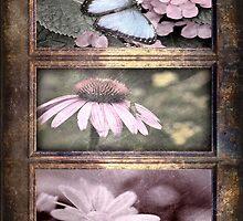 Memories of summer by MarieG