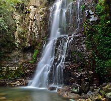 Minnamurra Falls. by Warren  Patten