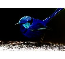 Special Blue Photographic Print