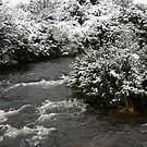 Creek In Thredbo by RubyFox