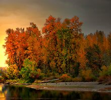 Fall On The Willamette River by Charles & Patricia   Harkins ~ Picture Oregon