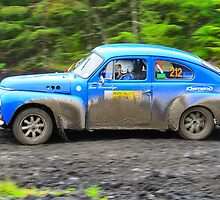 Rallying Volvo PV544 by Willie Jackson