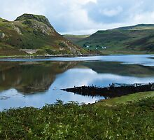 Landscape, Loch Beag, Amar River vally, Isle of Skye, Scotland, by Hugh McKean