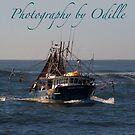 Tweed Trawlers by Odille Esmonde-Morgan