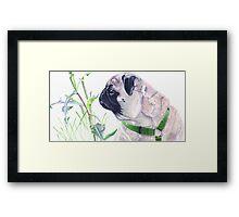 Pug & Nature - Colored Pencil Framed Print