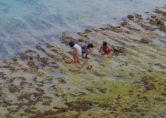 Kids paddling looking for little crabs by Dave P