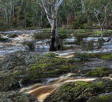 Nigretta Falls - Victoria by CJPhotos
