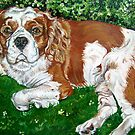 Spaniel portrait by db artstudio by Deborah Boyle
