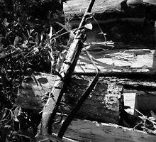 Black & White Gun by Rick McFadden