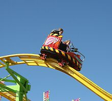 Screamin' Thrill Ride  by patjila