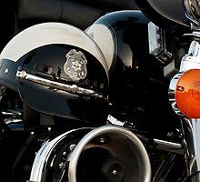 Biker Cop by Tim Gumz
